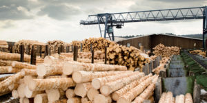 lumber industry has many different cost savings opportunities